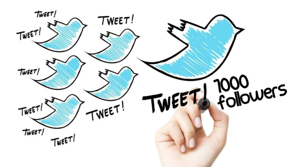How to gain 1000 followers on Twitter How to Gain 1000 Followers on Twitter